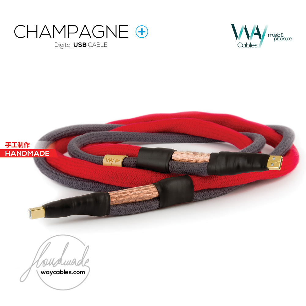 CHAMPAGNE PLUS USB Cable
